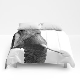 Black and white elephant portrait Comforters