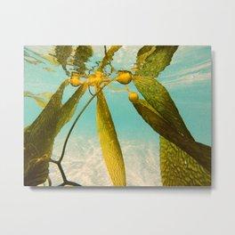 Seaweed Sity Metal Print