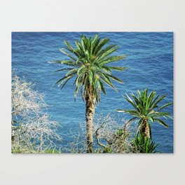 Palm Trees Meet Sea Canvas Print