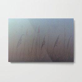 beach wheat Metal Print