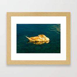 Spiegel / II Framed Art Print