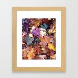 Fallen Fall Leaves Framed Art Print