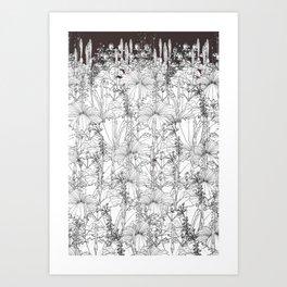 Hibiscus meets Pandanus (St. Damien 8) Art Print