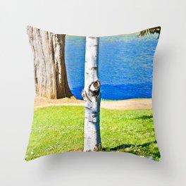 Birches! Throw Pillow
