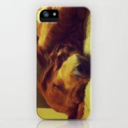 Sleepyhead iPhone Case