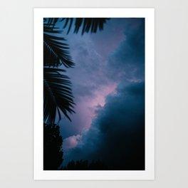 The Florida Storm Art Print