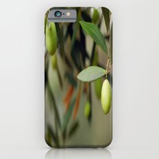 Olives On A Branch Slim Case iPhone 6s
