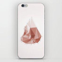 Rock iPhone Skin