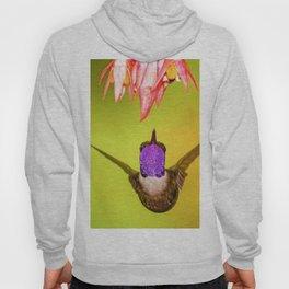 Hummingbird Seeks Flower (Color) Hoody
