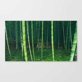Emerald And Lime Canvas Print