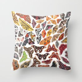 Saturniid Moths of North America Throw Pillow