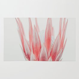 King Protea flower Rug
