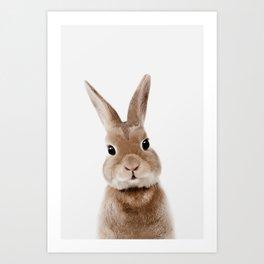 Bunny Print Art Print