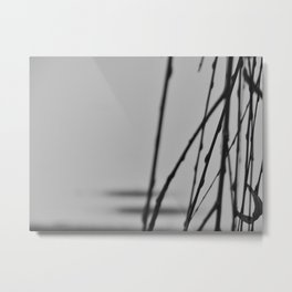 the curtain Metal Print