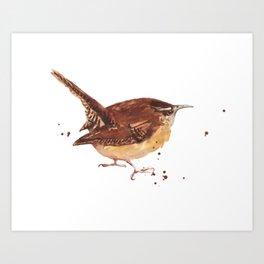 Feisty Wren Art Print