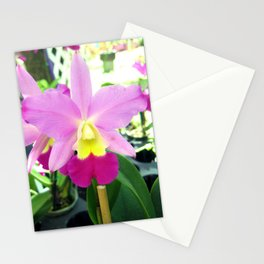 PURPLE ORCHID Stationery Cards