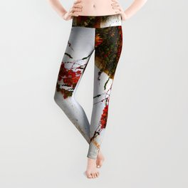 Impermanence  Leggings