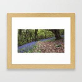 Beech Wood Bells Framed Art Print
