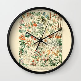 Flower Diagram // Fleurs V by Adolphe Millot 19th Century French Science Textbook Artwork Wall Clock