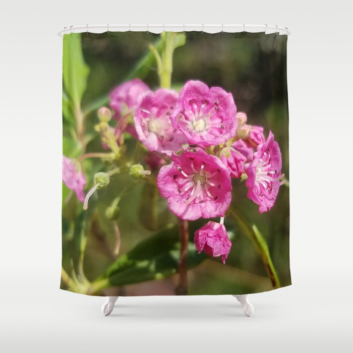 Laurel Shower Curtain By Lissasdesigns