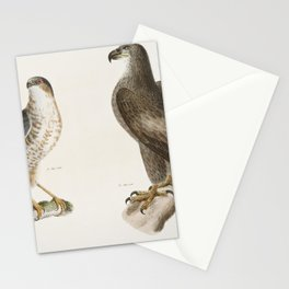 1 The Bald Eagle (Haliatos leucocephalus) 2 The Slate-colored Hawk (Astur fuscus)  from Zoology of N Stationery Cards