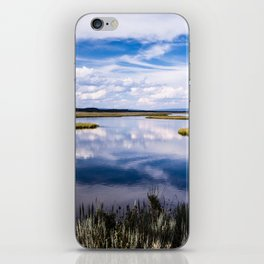 The Ranch II iPhone Skin