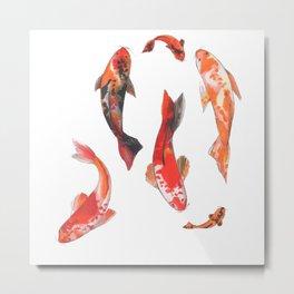 Fishes! Metal Print