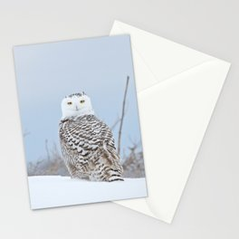 Adrift amid the drifts Stationery Cards