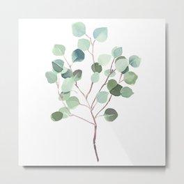 Eucalyptus Leaves Botanical Print Metal Print