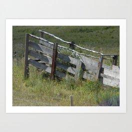 Cattle Chute Art Print