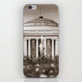 Lady Lever Art Gallery iPhone Skin