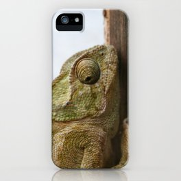 Close Up Of A Wild Green Chameleon iPhone Case