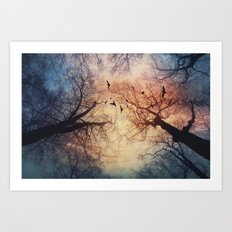 phenomenons Art Print
