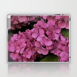 Pink hydrangea flowers Laptop & iPad Skin