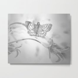 """Winged Apparation"" Butterfly Art by Murray Bolesta! Metal Print"