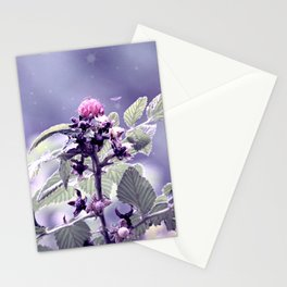 Mora  Stationery Cards