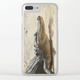 Alligator Photography | Reptile | Wildlife Art Clear iPhone Case