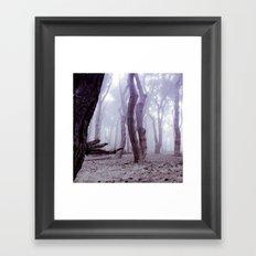 Print #12 Framed Art Print