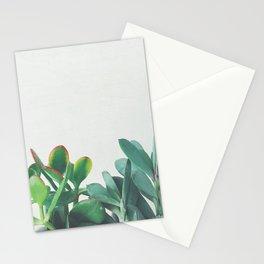 Crassula Group Stationery Cards