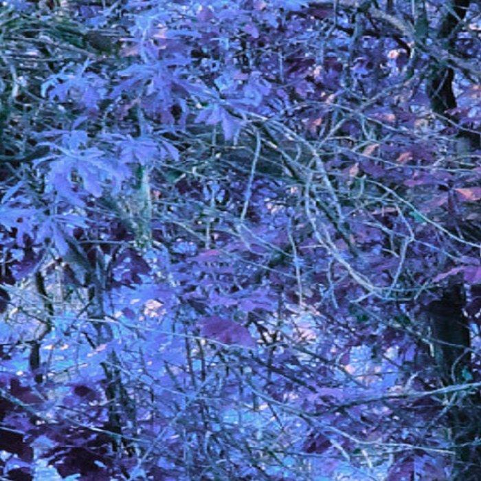Periwinkle Tree Landscape Leggings
