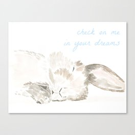 sleeping bunny Canvas Print