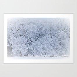 First Snow Fall Fresh Snow on Trees Nature Photography ~ Winter Hush Art Print