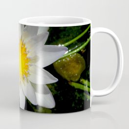 Purity in the Mud Coffee Mug