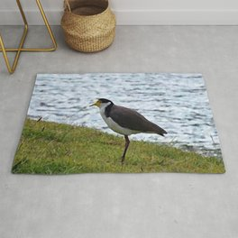 painting of lapwing  Rug