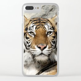 Tiger_20190301_by_JAMFoto Clear iPhone Case