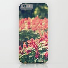 In red iPhone 6s Slim Case