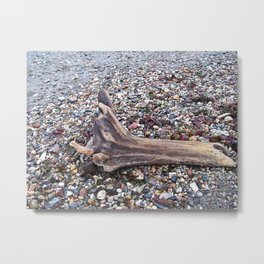 Driftwood on Beach Stones Metal Print