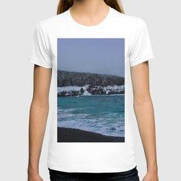 Saltwater Winter T-shirt