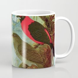 Amazonian Birds by Göldi & Emil August Belem Brazil Colorful Tropical Birds Scientific Illustration Coffee Mug