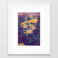 woodstock Framed Art Prints featuring Woodstock Daisy  by Scotty Photography